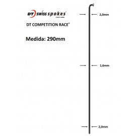Rayos DT SWISS COMPETITION RACE 290mm J